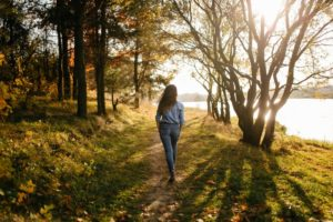 Chôdza v lese